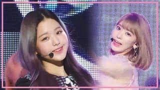 아이즈원 (IZ*ONE) - 비올레타 (Violeta) 교차편집 (Stage Mix) @Show Music Core