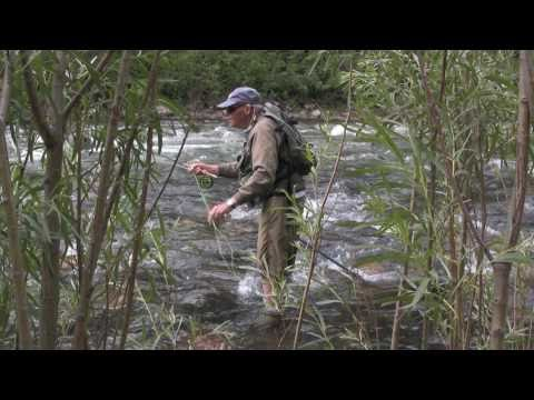 Fly Fishing the Gallatin River in Bozeman Montana