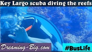 Buslife: Key Largo scuba diving the reefs