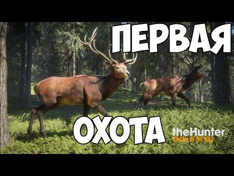 theHunter: Call of the Wild - Первая охота - Обзор игры
