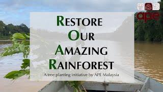 APE Malaysia - Restore Our Amazing Rainforest (ROAR)