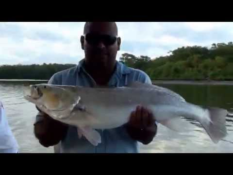 Sport Fishing Tours (Costa Rica)
