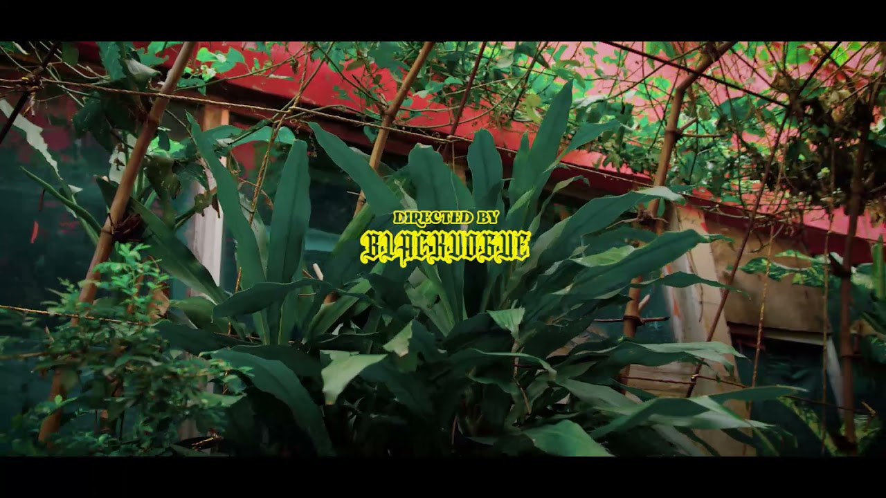 Download Jaydreamz - Shadow ( Official Music Video )