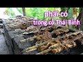 Tiết lộ cách làm cá nướng đặc sản lâu năm của người Thái Thụy Thái Bình #hnp