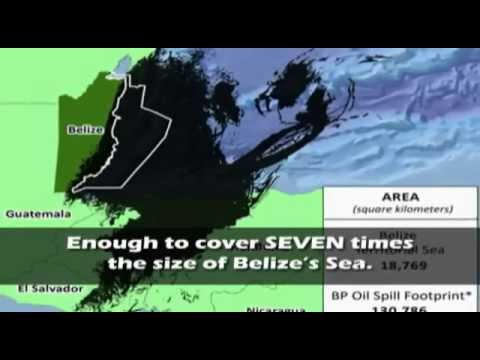 Vote No to Offshore Drilling in Belize on February 29, 2012.wmv