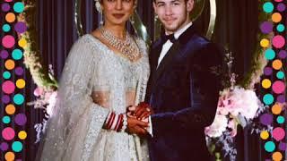 Priyanka Chopra and Nick Jonas Amazing Wedding Highlights
