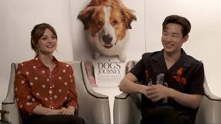 Download A Dog's Journey || Kathryn Prescott & Henry Lau Generic Junket Interview || #SocialNews.XYZ Mp3
