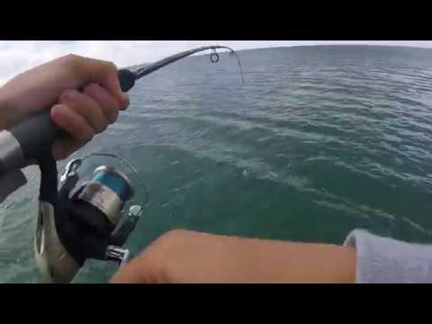 Fishing At Rye Pier