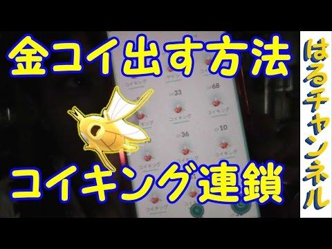 【ポケモンGO】金コイを出せる方法がある?コイキング連鎖【PokemonGO】