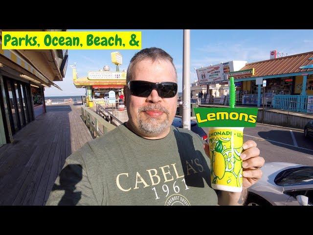 Giant Plastic Lemons