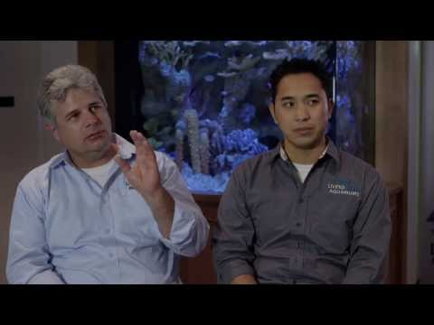 Mr. Saltwater Tank Interviews Mat Roy & Francis The Fish Geek From