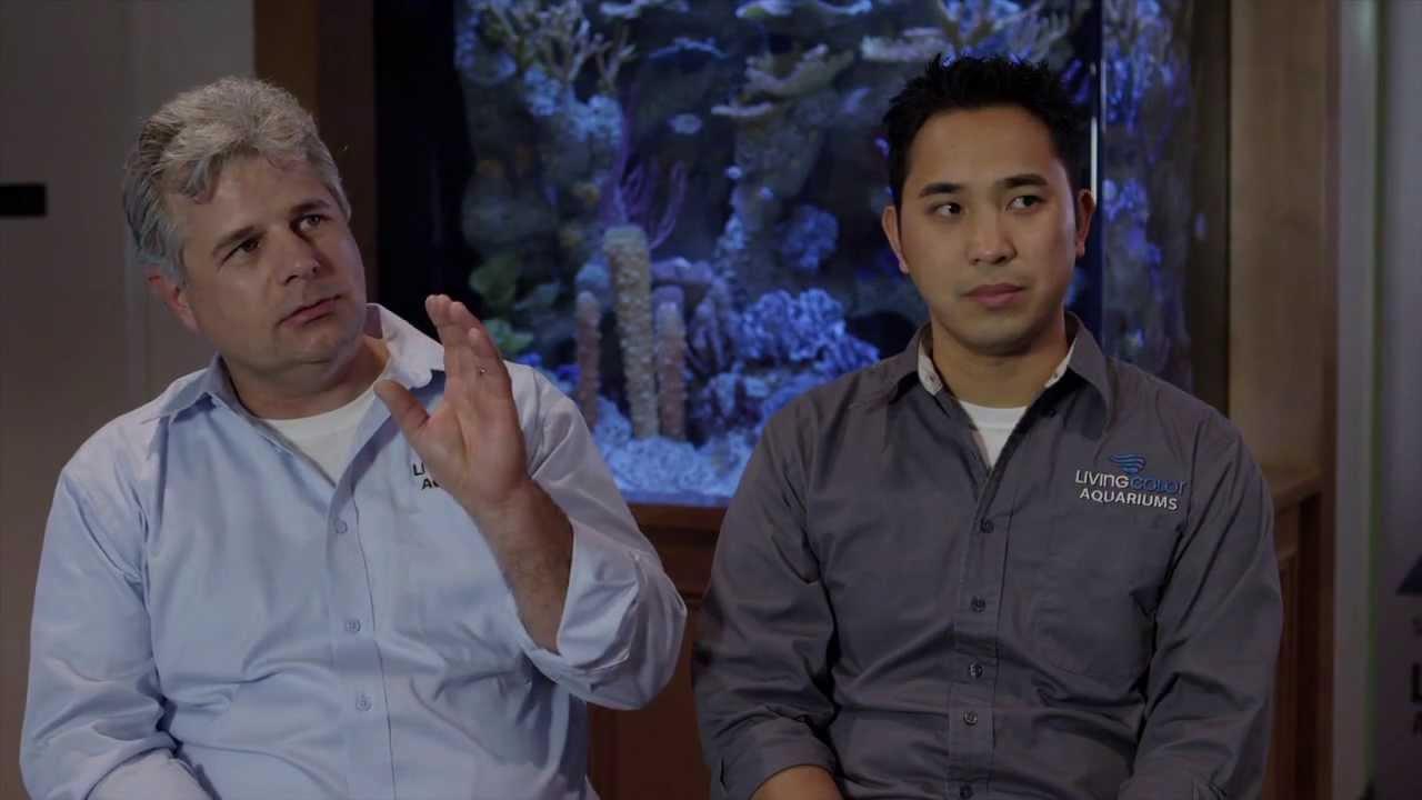 Fish tank kings season 3 - Mr Saltwater Tank Interviews Mat Roy Francis The Fish Geek From The Fish Tank Kings