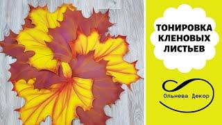 ТОНИРОВКА КЛЕНОВЫХ ЛИСТЬЕВ. Рабочие моменты в Студии Больших цветов от Olneva Decor