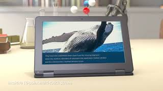 Review ASUS Chromebook Flip C213SA-YS02 11.6 inch Ruggedized & Spill Proof for 2019