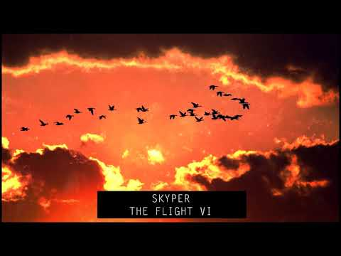 Skyper - The Flight VI
