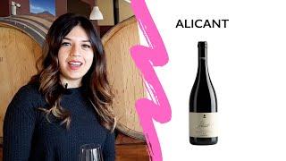 ALICANT 2015 Video