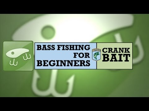 Bass Fishing for Beginners: Crankbait