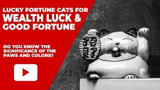 How To Choose The Right Feng Shui Lucky Fortune Cat For Good Wealth Luck