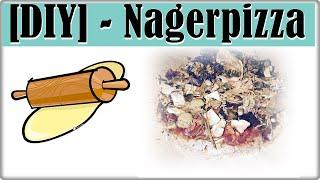 DIY - Nagerpizza Rezept || Leckerlis zum selber backen || Lecker, gesund & günstig