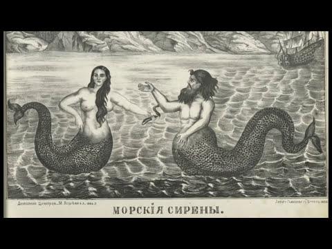 mermaids exists