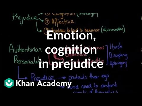Emotion and cognition in prejudice | Individuals and Society | MCAT | Khan Academy