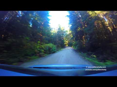Gold Bluff Beach - Prairie Creek Redwoods State Park, Scenic drive - 4K