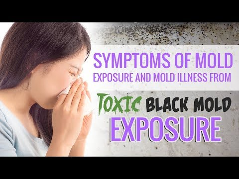 Symptoms of Mold Exposure and Mold Illness from Toxic Black Mold Exposure