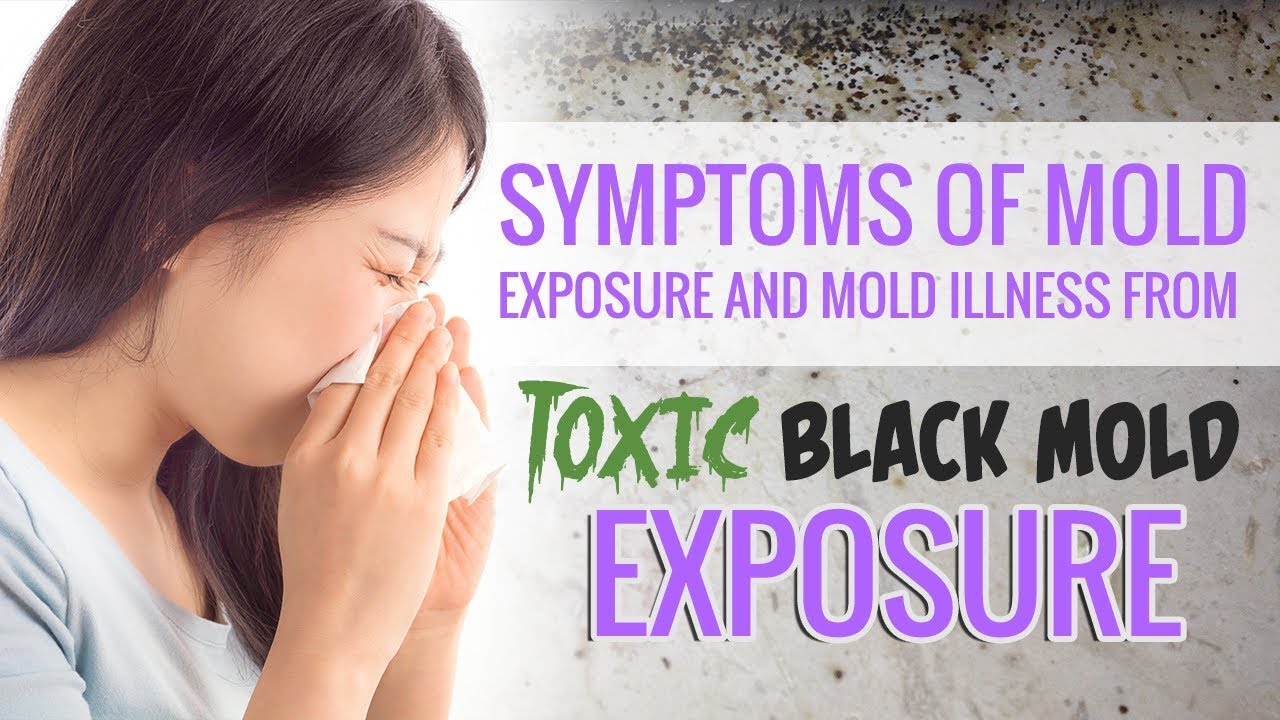 Symptoms Of Mold Exposure And Illness From Toxic Black