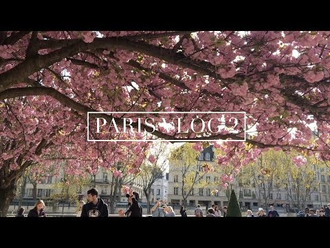 paris days 3 & 4: chill days in the city and versailles