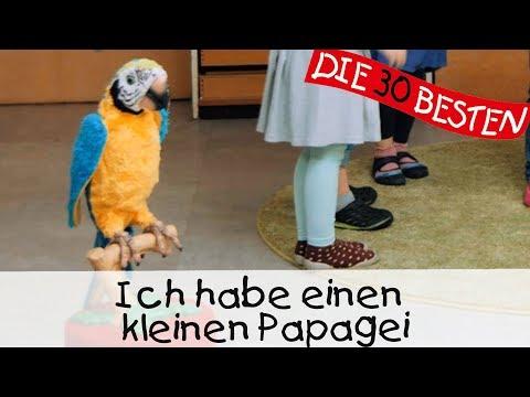 Ich Habe Einen Kleinen Papagei - Singen, Tanzen Und Bewegen || Kinderlieder