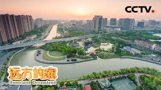 《远方的家》 20200604 长江行(103) 生态之城——上海  CCTV中文国际