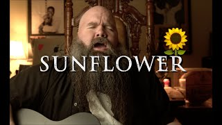 Post Malone & Swae Lee - Sunflower | Marty Ray Project Cover