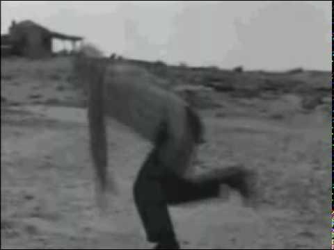 Herb Alpert & The Tijuana Brass - Zorba The Greek