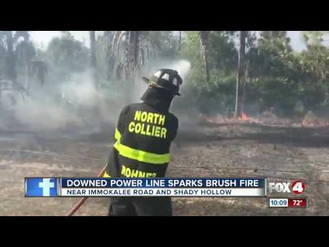 Power line sparks brush fire in Collier County