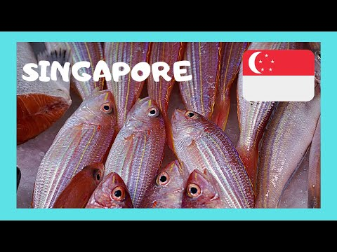 SINGAPORE, the graphic CHINESE FISH MARKET