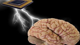 The Weird Way Your Memory Works