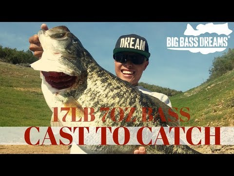 17lb Largemouth Bass - Cast To Catch On A Trout Swimbait