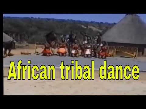 African tribal dance including Zulu, Xhosa, Lesotho, and Swati type dancing