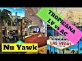 Tropicana Aruba Resort & Casino, Palm-Eagle Beach, Aruba ...