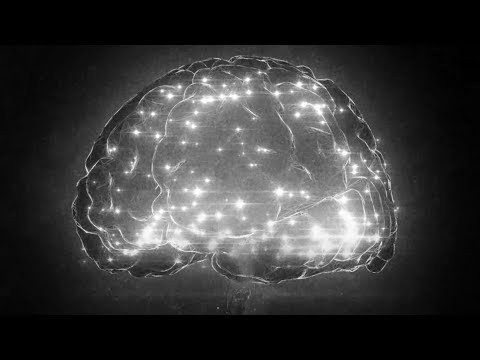 Unseen Ideas: NeuroPixel probes - Making sense of the 70 billion neurons in the brain