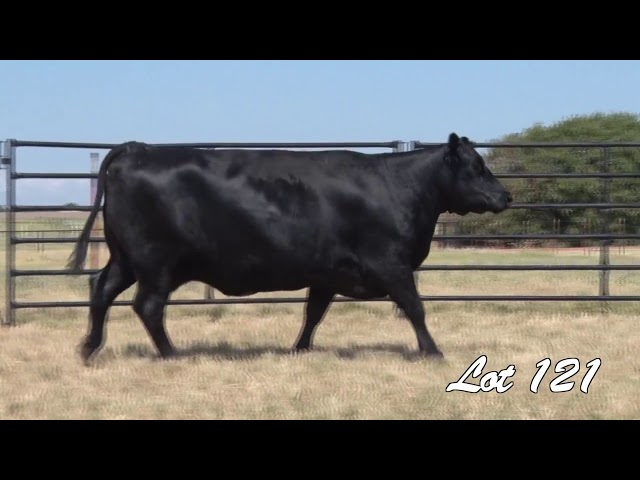 Pollard Farms Lot 121