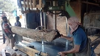 Very Fast Saw Mill Workers in the World। Bangladesh Village Saw Mill Wood Cutting Technique