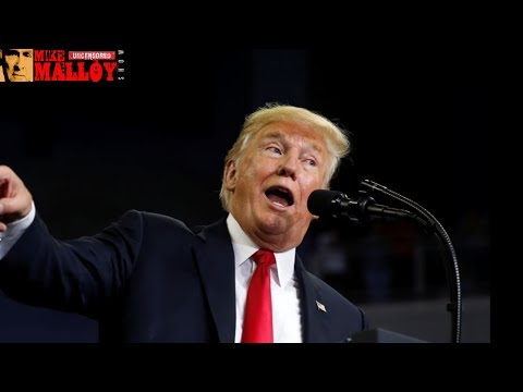 The Most Outrageous Lies In Trump's Interview With The Daily Caller