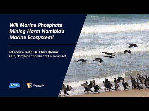 Will Marine Phosphate Mining Harm Namibia's Marine Ecosystem