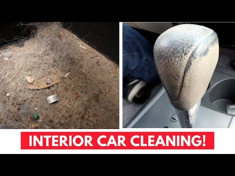 Oddly Satisfying Interior Car Cleaning - Compilation #1