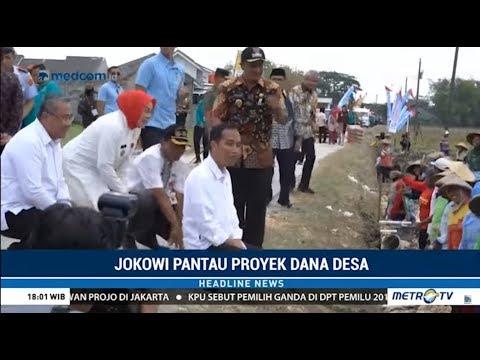 Kerja ! Jokowi Turun Ke Sawah Pantau Proyek Dana Desa