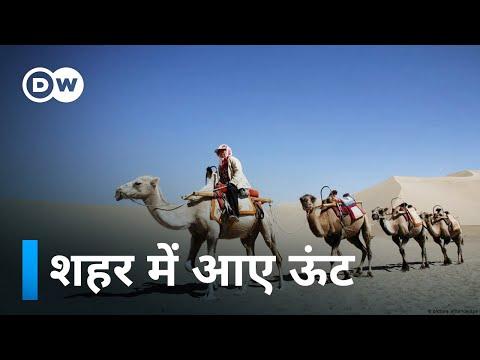 Manthan: Episode 56: Farming in Morocco (मोरक्को के किसान)