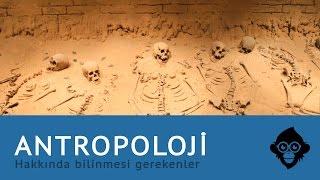 Antropoloji Hakkında Bilinmesi Gerekenler
