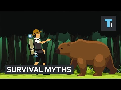 Thumbnail: 5 survival myths that could get you killed
