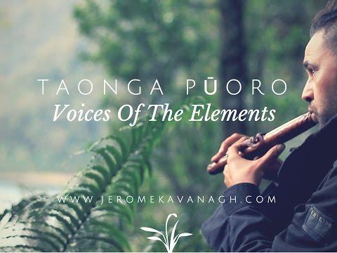 Taonga Pūoro - Voice Of The Elements